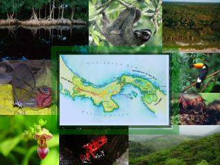 A Preliminary Assessment of Ecosystem Vulnerability to Climate Change in Panama