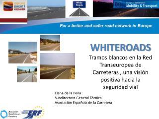 Elena de la Peña Subdirectora General Técnica Asociación Española de la Carretera