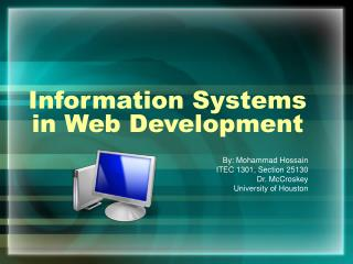 Information Systems in Web Development