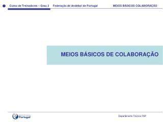 MEIOS B ÁSICOS DE COLABORAÇÃO