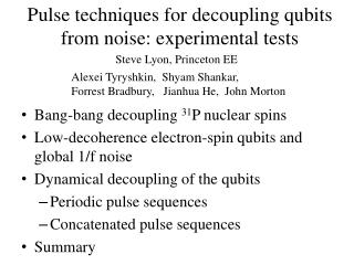 Pulse techniques for decoupling qubits from noise: experimental tests
