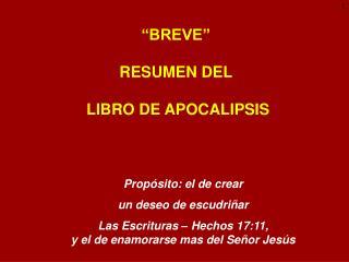 �BREVE� RESUMEN DEL  LIBRO DE APOCALIPSIS