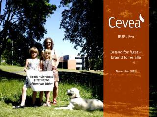 BUPL Fyn Br�nd for faget  �  br�nd for os alle November 2012
