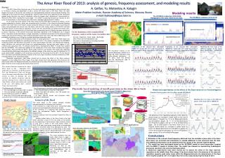 The Amur River flood of 2013: analysis of genesis, frequency assessment, and modeling results