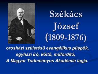 Székács József ( 1809-1876)