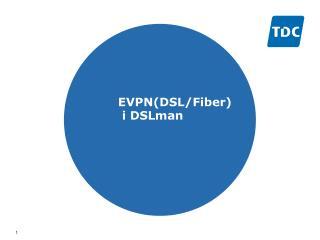 EVPN(DSL/Fiber)  i DSLman