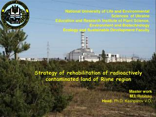 Strategy of  rehabilitation of radioactively contaminated land  of  Rivne region