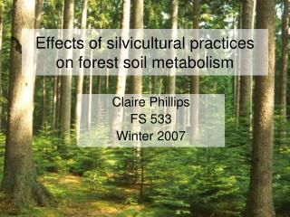 Effects of silvicultural practices on forest soil metabolism