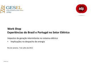 Work Shop Experiências do Brasil e Portugal no Setor Elétrico