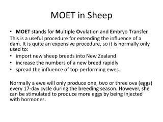 MOET in Sheep