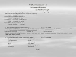 Test 2. pentru clasa a VI –a  Religii , popoare                             prof.Niculina Felseghi