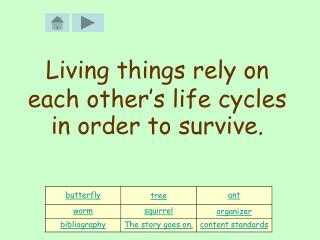 Living things rely on each other's life cycles in order to survive.