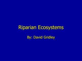 Riparian Ecosystems