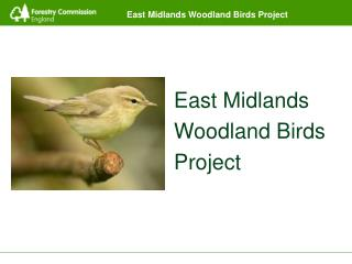 East Midlands Woodland Birds Project
