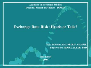 Academy of Economic Studies Doctoral School of Finance - DOFIN Exchange Rate Risk: Heads or Tails?