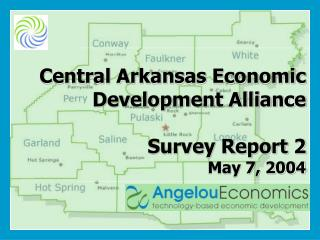 Central Arkansas Economic Development Alliance Survey Report 2 May 7, 2004