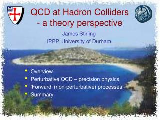 QCD at Hadron Colliders - a theory perspective