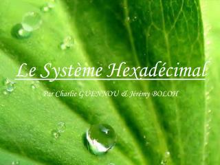 Le Système Hexadécimal