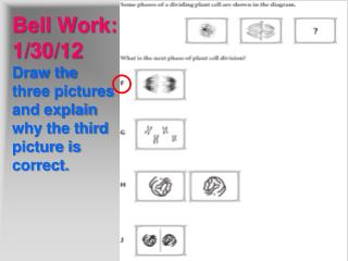 Bell Work:  1/30/12 Draw the three pictures and explain why the third picture is correct.