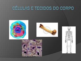 CÉLULAS E TECIDOS DO CORPO