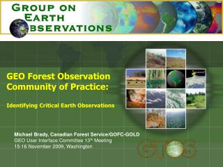 GEO Forest Observation Community of Practice: Identifying Critical Earth Observations