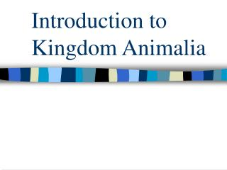 Introduction to Kingdom Animalia