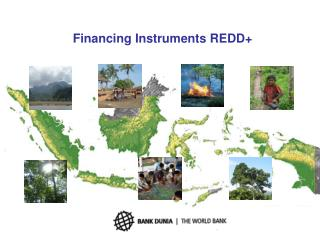Financing Instruments REDD+