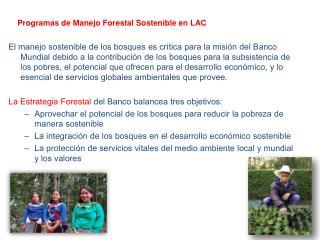 Programas de Manejo Forestal Sostenible en LAC