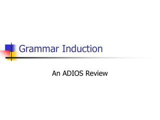 Grammar Induction