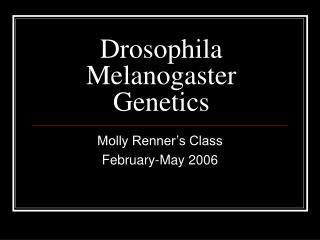 Drosophila Melanogaster Genetics