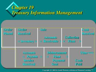 Chapter 19 Treasury Information Management