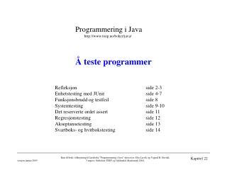 Å teste programmer