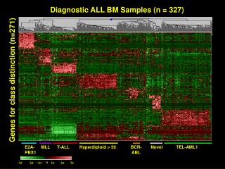 Diagnostic ALL BM Samples (n = 327)