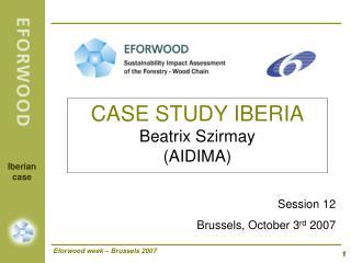CASE STUDY IBERIA Beatrix Szirmay (AIDIMA)