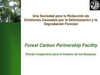 Bosques  en el Mercado del Carbono