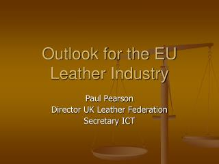 Outlook for the EU Leather Industry