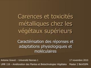 Carences et toxicités métalliques chez les végétaux supérieurs