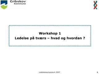 Workshop 1 Ledelse på tværs – hvad og hvordan ?