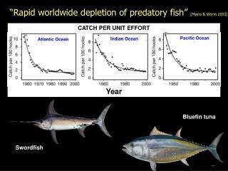 """Rapid worldwide depletion of predatory fish""  (Myers & Worm 2003)"