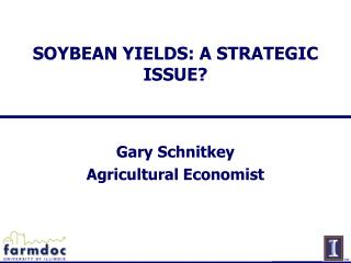 SOYBEAN YIELDS: A STRATEGIC ISSUE?