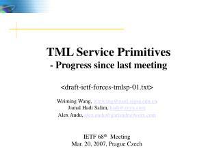 TML Service Primitives - Progress since last meeting