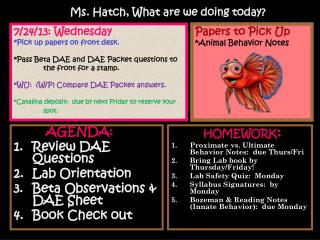 AGENDA: Review DAE Questions Lab Orientation Beta Observations & DAE Sheet Book Check out