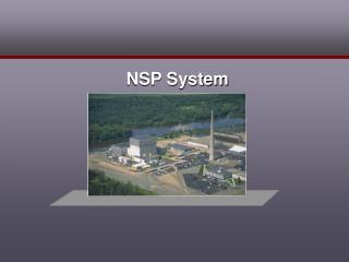 NSP System