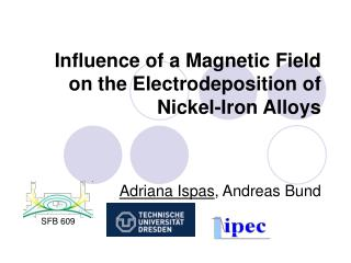 Influence of a Magnetic Field on the Electrodeposition of Nickel-Iron Alloys
