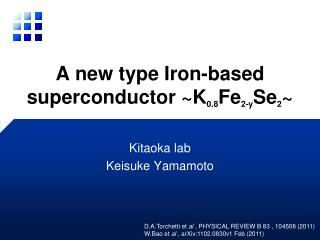 A new type Iron-based superconductor ~K 0.8 Fe 2-y Se 2 ~