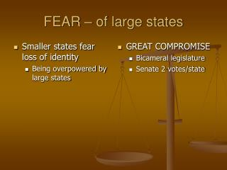 FEAR – of large states