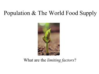 Population & The World Food Supply