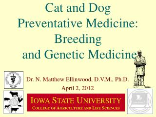Cat and Dog Preventative Medicine: Breeding  and Genetic Medicine