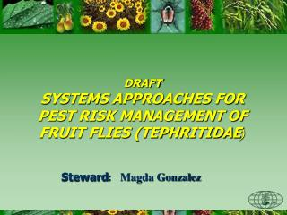 DRAFT SYSTEMS APPROACHES FOR PEST RISK MANAGEMENT OF FRUIT FLIES (TEPHRITIDAE )