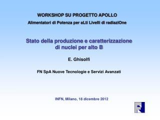 Stato della produzione e caratterizzazione  di nuclei per alto B E. Ghisolfi